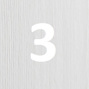 sosna barwiona na biel1