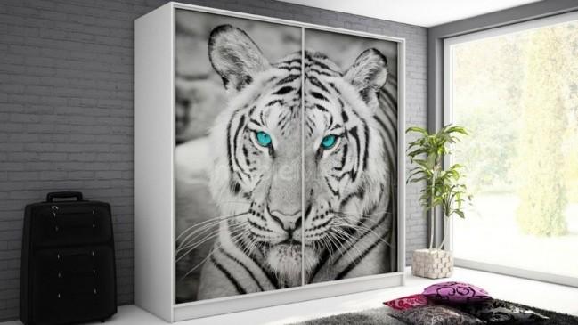 tygrys-500x900